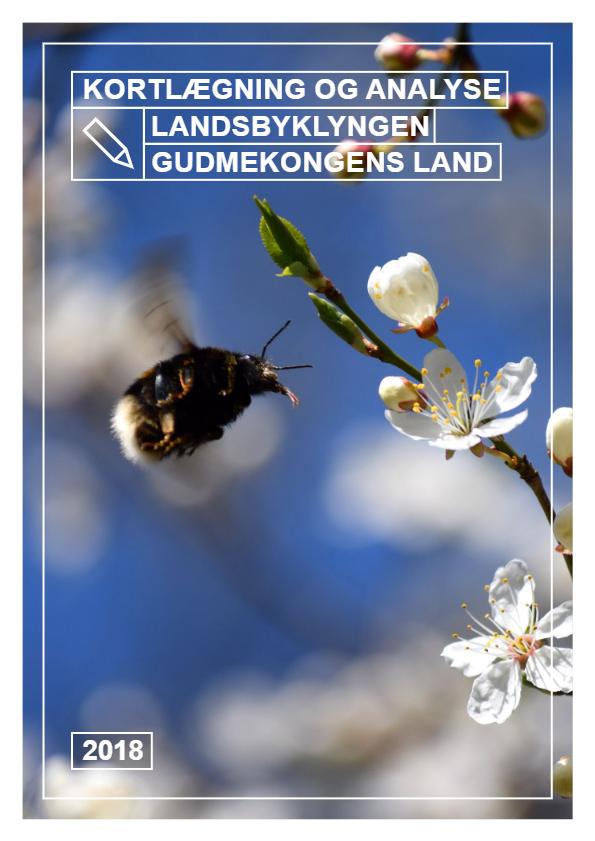 Kortlægning og analyse – Landsbyklyngen Gudmekongens Land