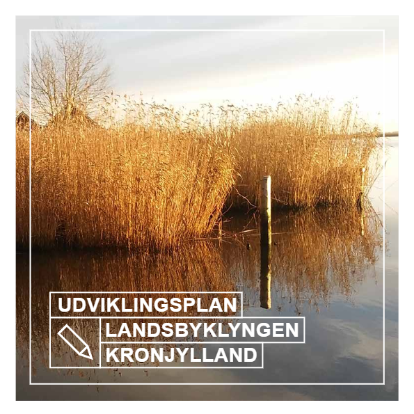 Udviklingsplan Landsbyklyngen Kronjylland