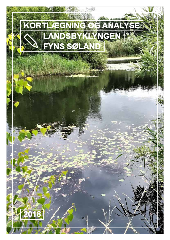 Kortlægning og analyse – Landsbyklyngen Fyns Søland