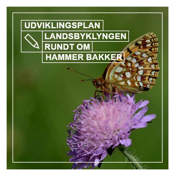 Udviklingsplan – Landsbyklyngen Rundt om Hammer Bakker