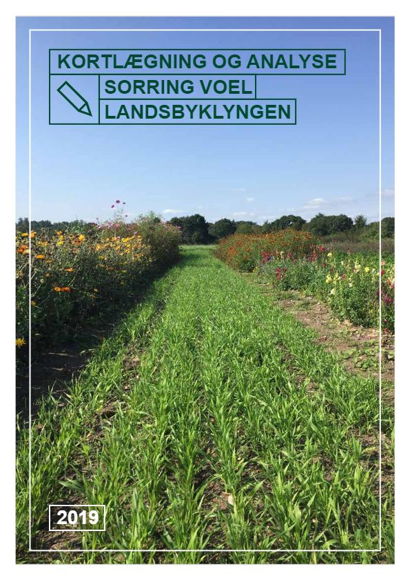 Kortlægning og analyse – Landsbyklynge Sorring Voel