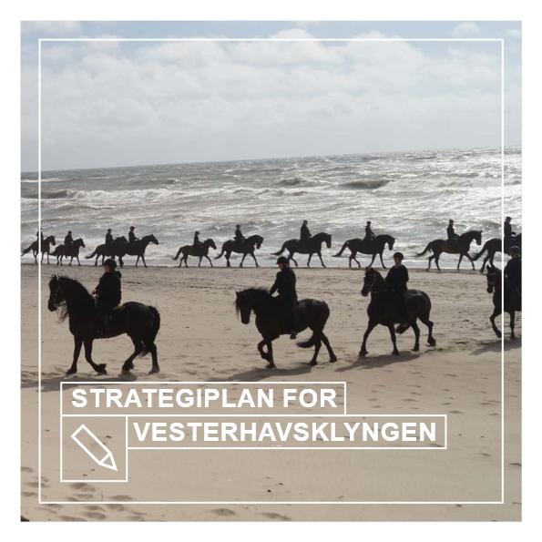 Strategiplan for Vesterhavsklyngen