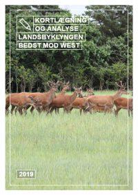 29425 Rapport_Landsbyklyngen Bedst mod West_WEB-thumbnail