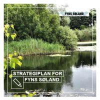 31998 StrategiplanFyns Søland_21x21cm_WEB-thumbnail